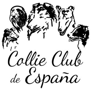 Logo Collie