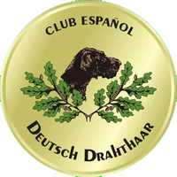 Logo Deutsch Drahthaar